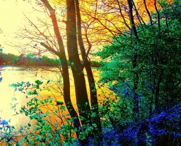 FreePhotosForCommercialUse.com-free-image-free-use-beautiful-landscape-autumn-images
